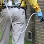 Ants and Bugs Be Gone Pest Control - Portland Pest Control