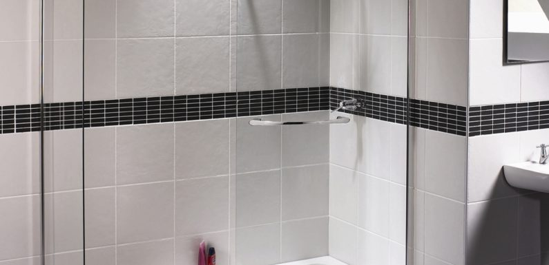 Purchase Excellent and Low cost Electrical Bidet Bathroom Seat On-line