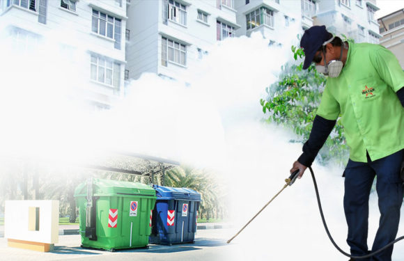Go For a Constructing And Pest Inspection Sydney Earlier than Shopping for a Property