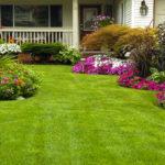 Ideas for Landscape Gardening Brisbane
