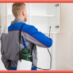 It is Important to Know about Pest Control Services
