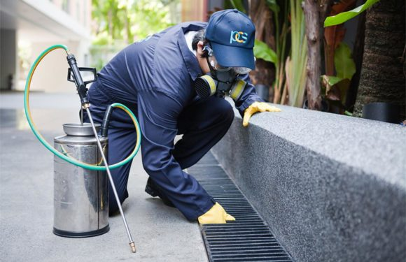 Make A Secured Dwelling With The Property Inspection Sydney
