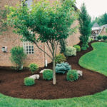 Online Interior And Landscape Designing Services