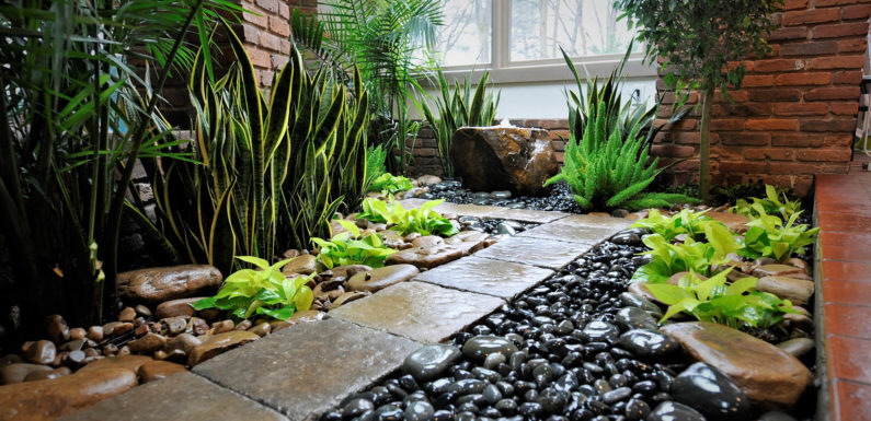 Artificial Grass, An Perfect Turf For Pets