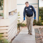 What Should You Know Before Doing Pest Inspection?