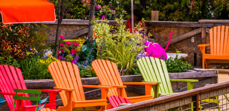 Ways to Upgrade Your Backyard