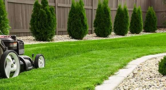 3 Great Tips To Get Your Lawn in Shape Prior to Selling