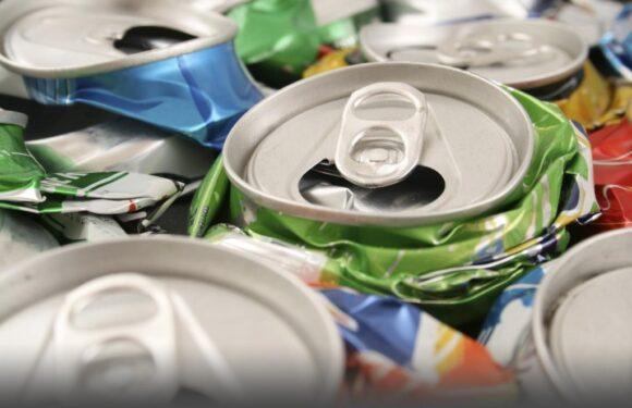 Hire A Professional Rubbish Removal Company To Remove Domestic Waste