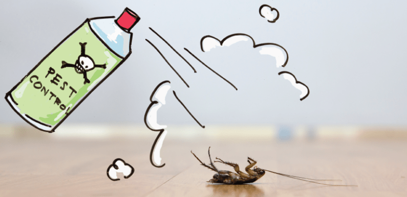 3 Pests You Definitely Don't Want in Your Home
